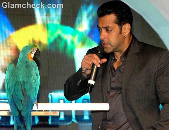salman khan big boss 6 launch