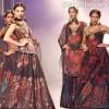 Ritu kumar WIFW S-S 2013-grand finale collection