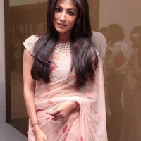 Chitrangada Singh at Nirav Modis Jewels Event