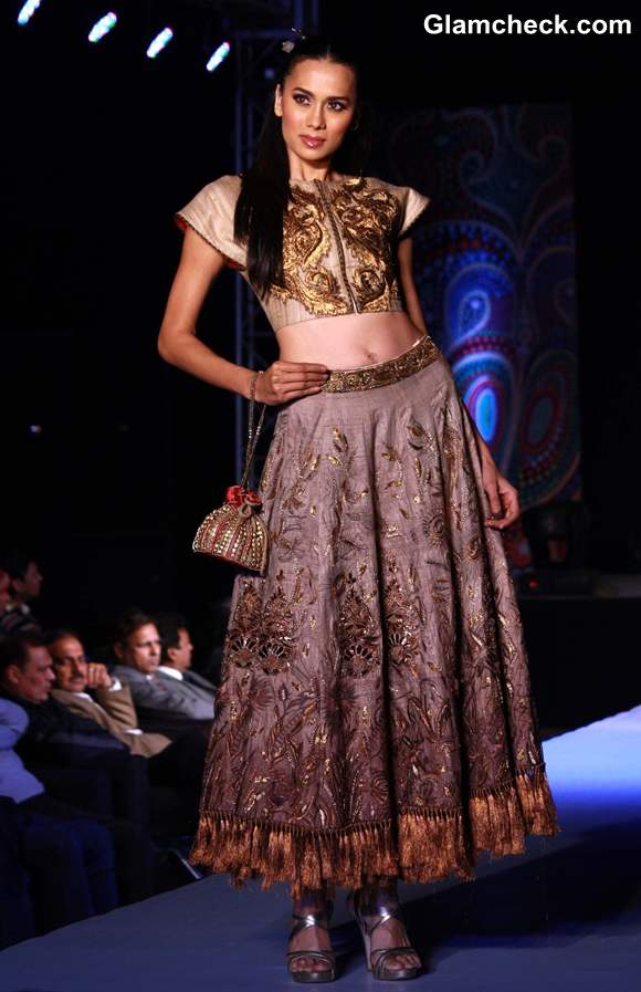 Ministry of Textile Fashion Show  in New Delhi-12