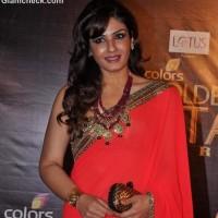 Raveena Tandon Saree at Colors Golden Petal Awards 2012