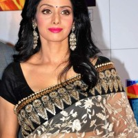 Sridevi hairstyle makeup At Zee Cine Awards 2013