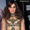Bipasha Basu hairstyle curly hair 2013