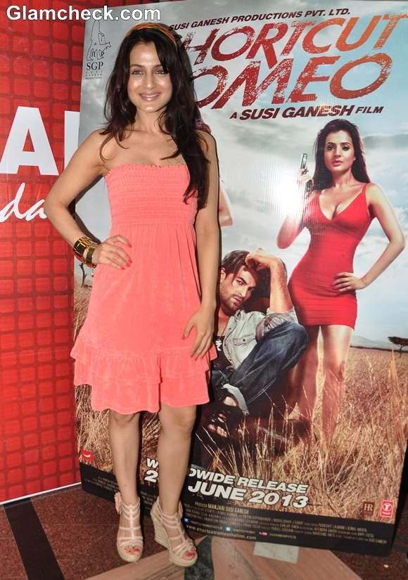 Ameesha Patel Shortcut Romeo 2013 movie