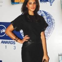 Nargis Fakhri Little Black Dress Lonely Planet Travel Awards 2013