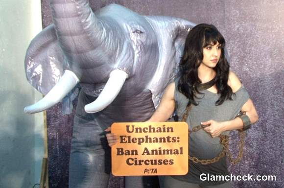 Lauren Gottlieb for PETA Anti-Circus Campaign Photoshoot