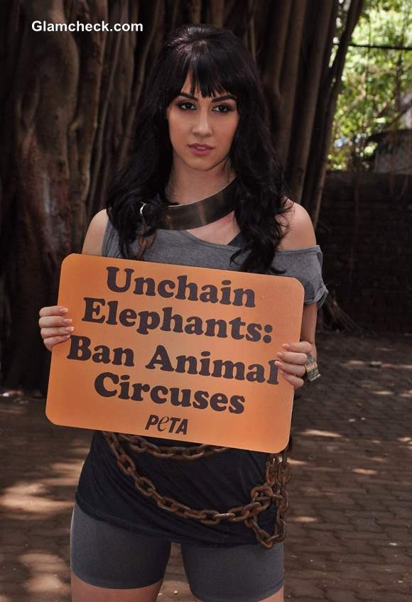 Lauren Gottlieb in PETA Anti-Circus Campaign