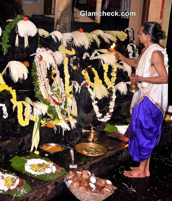 Nag Panchami 2014 Indian Festival