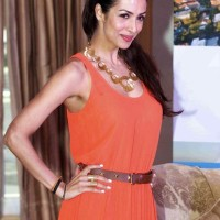 Malaika Arora Khan Indian Film Festival of Melbourne 2013