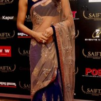 Priyanka Chopra at SAIFTA 2013