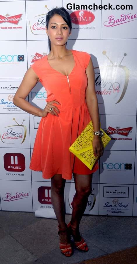 Barkha Bisht 2013 in Orange Dress at Telly Calender 2014 Announcement