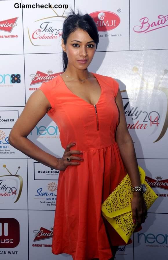 Barkha Bisht in Orange Dress at Telly Calender 2014 Announcement