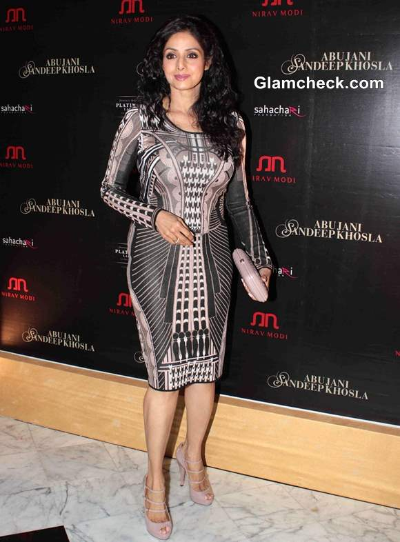 Sridevi 2013 pictures in dress