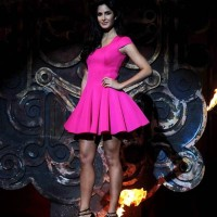 Katrina Kaif in Pink Dress pictures 2013