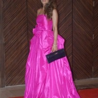 Natasha Poonawala in Fuchsia Princess Gown at Hello Magazine Awards 2013