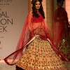 Aamby Valley IBFW 2013- Mumbai Falguni and Shane Peacock Collection