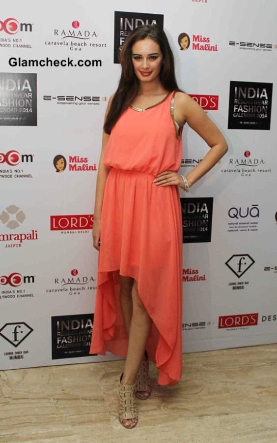 Evelyn Sharma at the unveiling of Resort wear 2014 Fashion Calendar