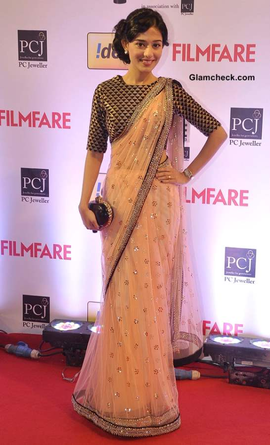 Amrita Rao 2014 Idea Filmfare Awards