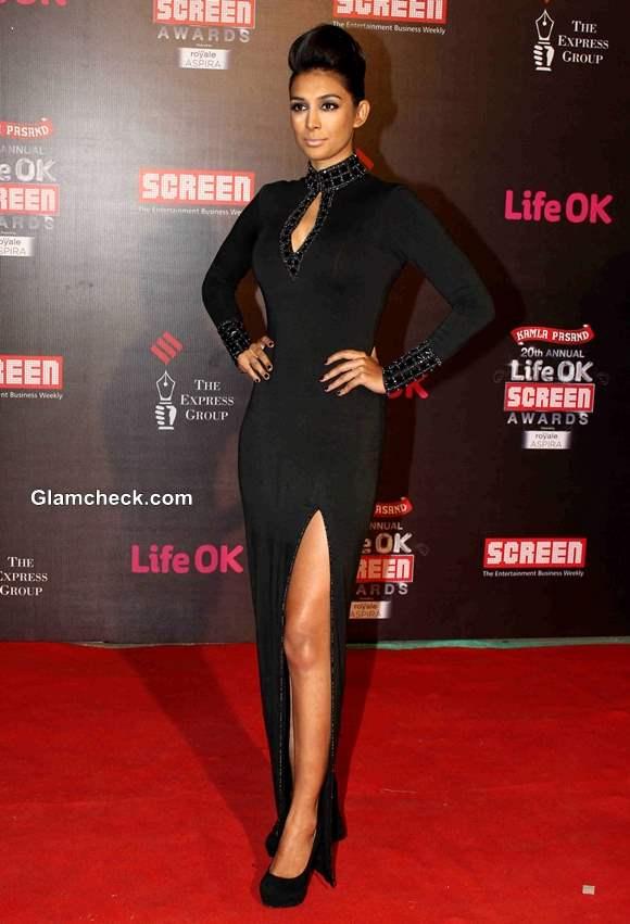 Preeti Desai 2014 Annual Life OK Screen Awards