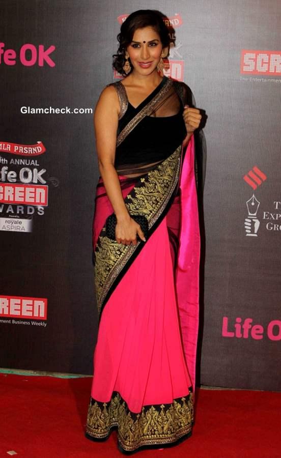 Sophie Choudry in sari at Annual Life OK Screen Awards 2014