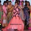 Genelia DSouza at Silk Mark Bridal Extravaganza 2014