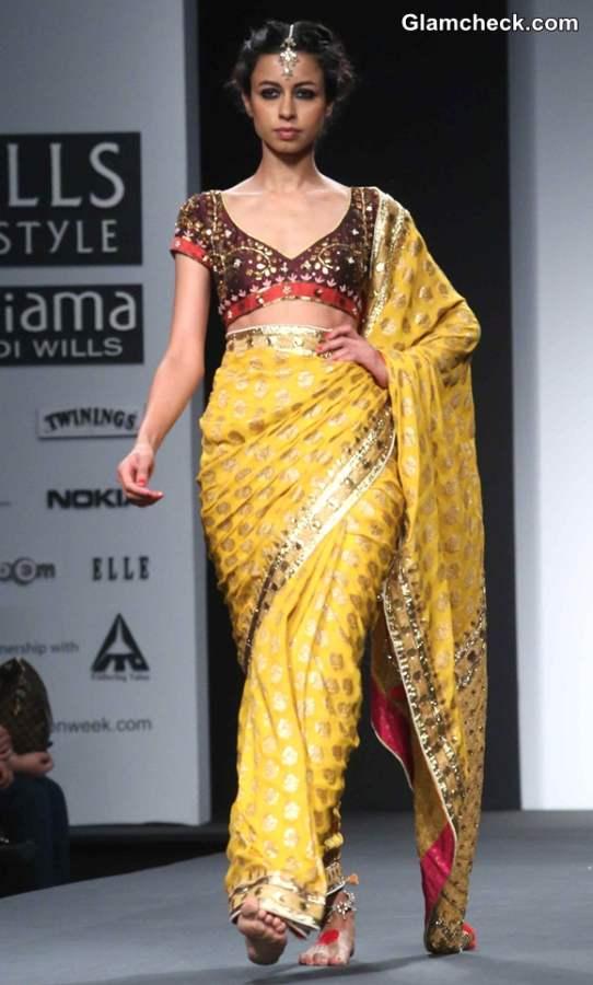 Anupama Dayal collection at Wills Lifestyle India Fashion Week A-W 2014