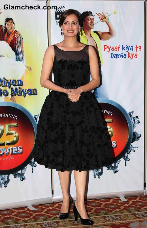 Dia Mirza 2014 at Vasu Bhagnanis 25th Movie Celebration