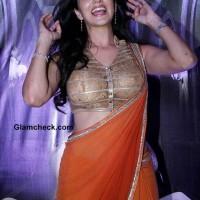 Sunny Leone in Rohit Verma Sari 2014