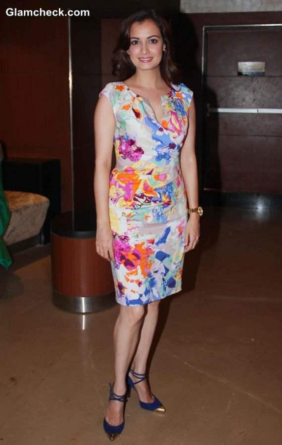 Dia Mirza in dress 2014