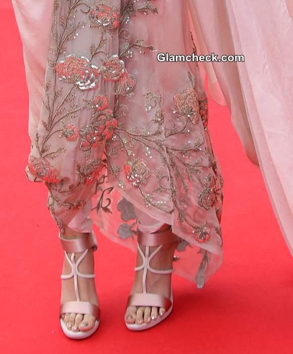 Sonam Kapoor Cannes 2014  Pictures
