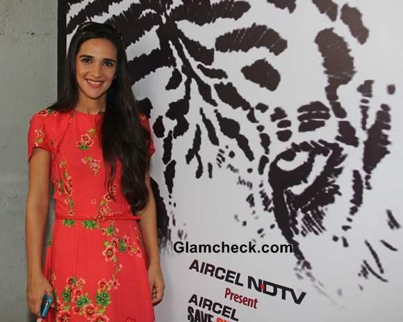 Tara Sharma on World Tiger Day 2014