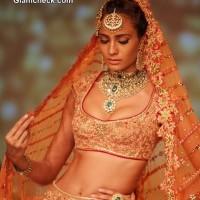 Tarun Tahiliani Bridal collection 2014