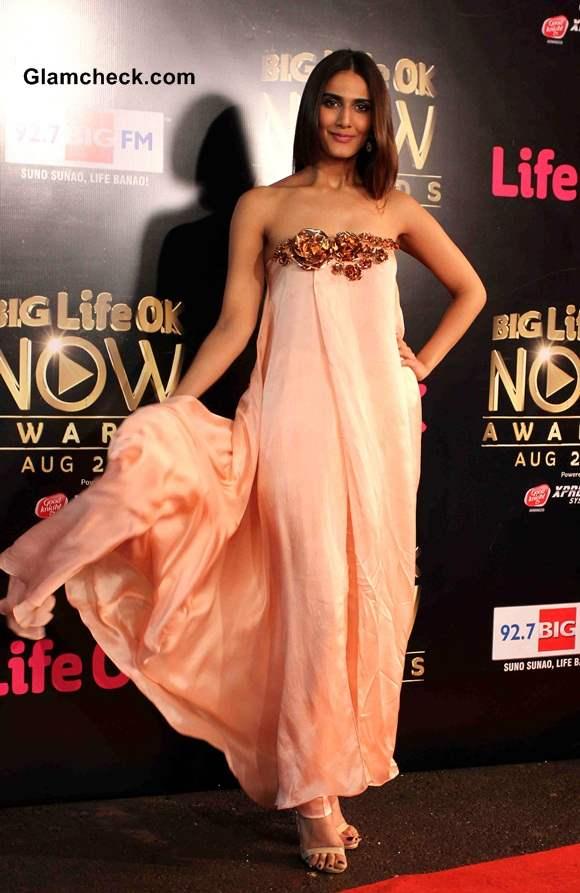 Vaani Kapoor 2014 Big Life OK Now Awards