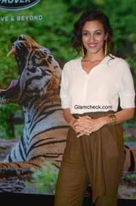 Neha Sareen 2014
