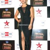 Priyanka Chopra at Big Star Entertainment Awards 2014