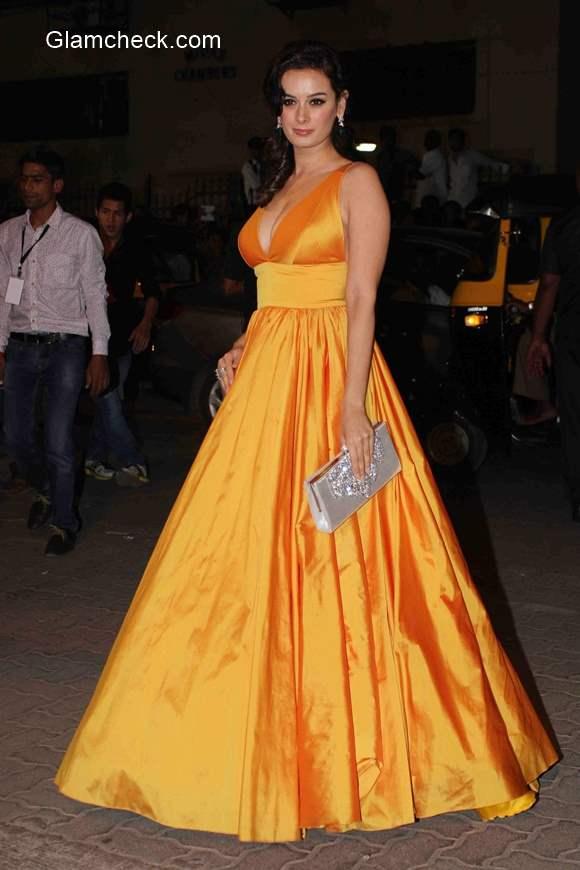Evelyn Sharma 2015 at 60th Filmfare Awards