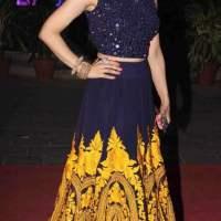 Amisha Patel 2015