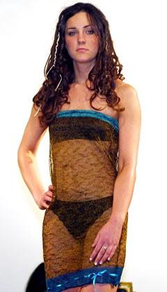 Kate Middletons sheer dress