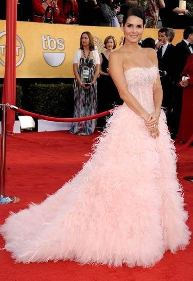 Angie Harmon in feathered gown at 2011 SAG Awards