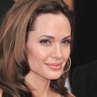 Jolie Dismisses Allegations of Copyright Infringement