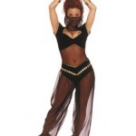 Belly dancer harem pants