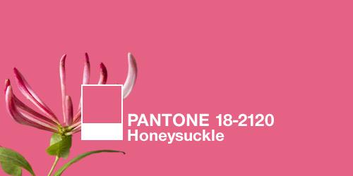 Pantone declares Honeysuckle as the color of 2011