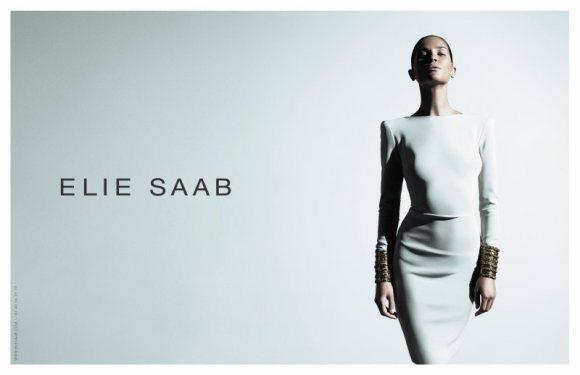 Erin Wasson Elie Saab Spring 2011 Campaign 2