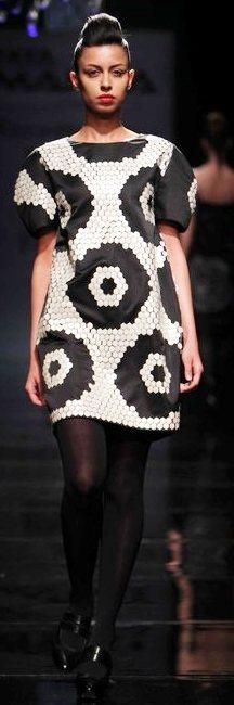 Designer Rajesh Pratap Singh A-W 2011-3
