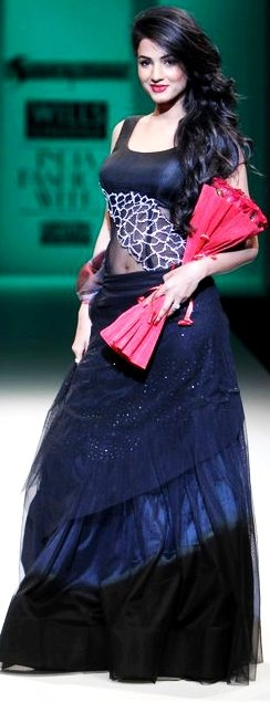 Designer Sadan Pande A-W 2011-2