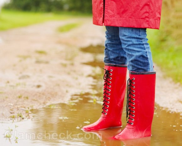 monsoon accessories gumboots