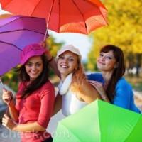 monsoon accessories umbrellas