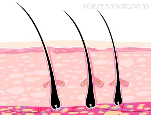 oily scalp causes