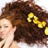 natural solutions for hair problems