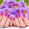 Spring nail art purlpe nails